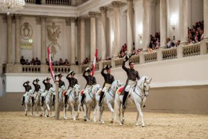 Cavalos-1024x682