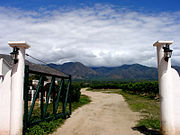 180px-Argentine_vineyard_and_mountains.